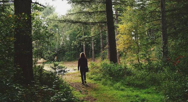 Person i skogen 600x328